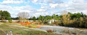 rio-cega-puente